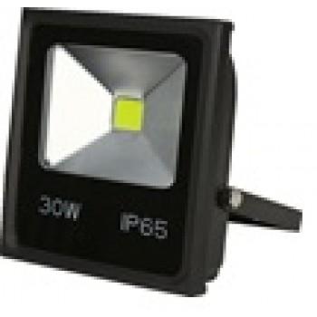 GL-FLW1-30W